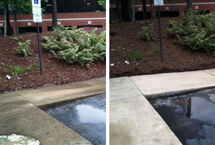 Sidewalks are no problem for Blue Wave.